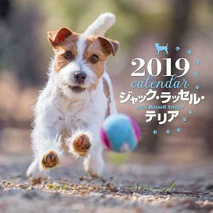 大判カレンダー ジャック・ラッセル・テリア 2019