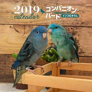 大判カレンダー コンパニオンバード インコ&オウム 2019