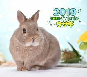 ミニカレンダー ウサギ 2019
