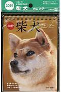 柴犬カレンダー 卓上書き込み式 B6タテ 2019