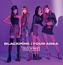 BLACKPINK IN YOUR AREA(通常盤)(DVD付)