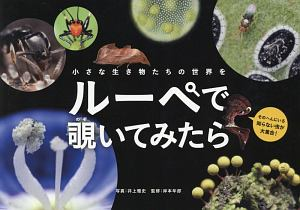 『小さな生き物たちの世界を ルーペで覗いてみたら』渡辺茂男