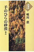 手のひらの砂漠 大活字本シリーズ
