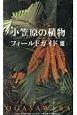 小笠原の植物 フィールドガイド (3)