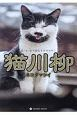猫川柳 ネコダマシイ