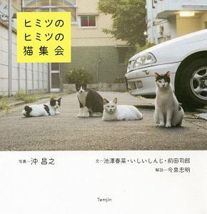『ヒミツのヒミツの猫集会』美内すずえ