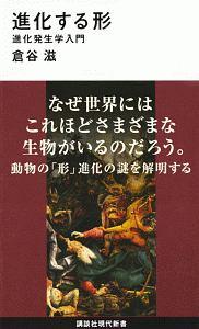 『進化する形』上野健一