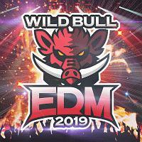 Wild Bull EDM 2019