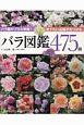 バラ図鑑475種 バラ園のプロが解説!育てたい品種が見つかる
