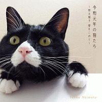 皆川おさむ『令和元年の猫たち』