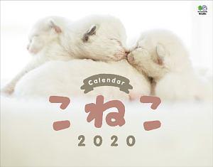 関由香『こねこカレンダー 壁掛け 2020』