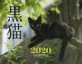 黒猫カレンダー 壁掛け 2020