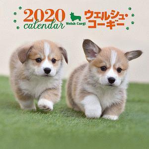 大判カレンダー ウェルシュ・コーギー 2020
