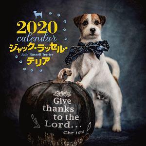 大判カレンダー ジャック・ラッセル・テリア 2020