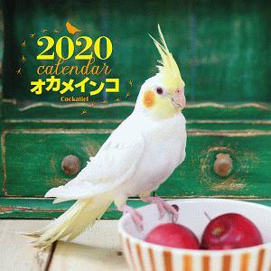 大判カレンダー オカメインコ 2020