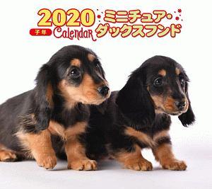 ミニ判カレンダー ミニチュア・ダックスフンド 2020