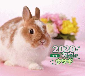 ミニ判カレンダー ウサギ 2020