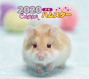 ミニ判カレンダー ハムスター 2020