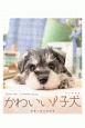 かわいい!子犬〈卓上〉 カレンダー 2020