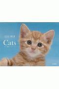 Cats カレンダー 2020