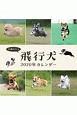 飛行犬カレンダー 2020
