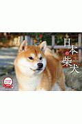 日本の柴犬カレンダー 2020