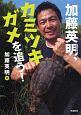 加藤英明、カミツキガメを追う! 環境ノンフィクション