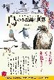 遺伝子から解き明かす鳥の不思議な世界