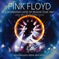 A Momentary Lapse Of Reason Tour 1987 King Biscuit Flower Hour