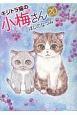 キジトラ猫の小梅さん (20)