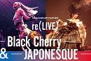 KODA KUMI LIVE TOUR 2019 re(LIVE) -Black Cherry-