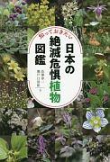 知っておきたい日本の絶滅危惧植物図鑑