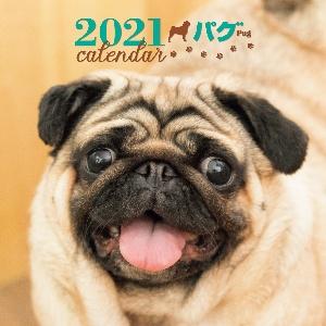 2021年 大判カレンダー パグ
