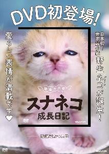 砂漠の天使スナネコ成長日記 DVD初登場!