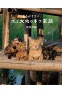 岩合光昭『あるがままに、水と大地のネコ家族 劇場版岩合光昭の世界ネコ歩き』