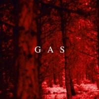 ガス『魔の山』