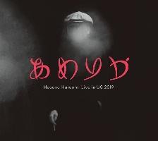細野晴臣『あめりか/Hosono Haruomi Live in US 2019』